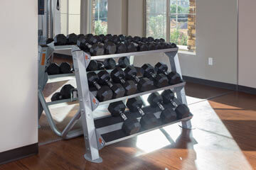 Condo Rentals in Phoenix - Fitness weights